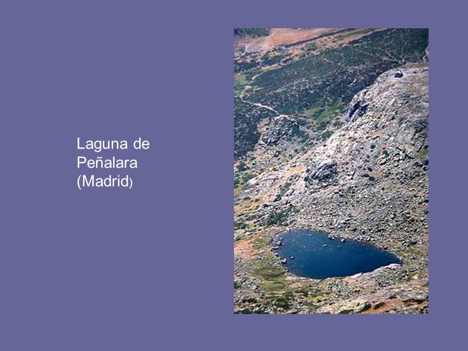 Laguna de Peñalara (Madrid)