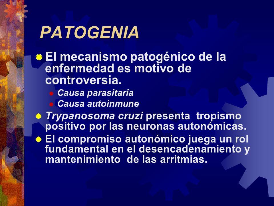 PATOGENIAEl mecanismo patogénico de la enfermedad es motivo de controversia. Causa parasitaria. Causa autoinmune.