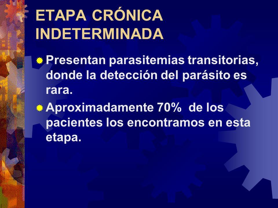 ETAPA CRÓNICA INDETERMINADA