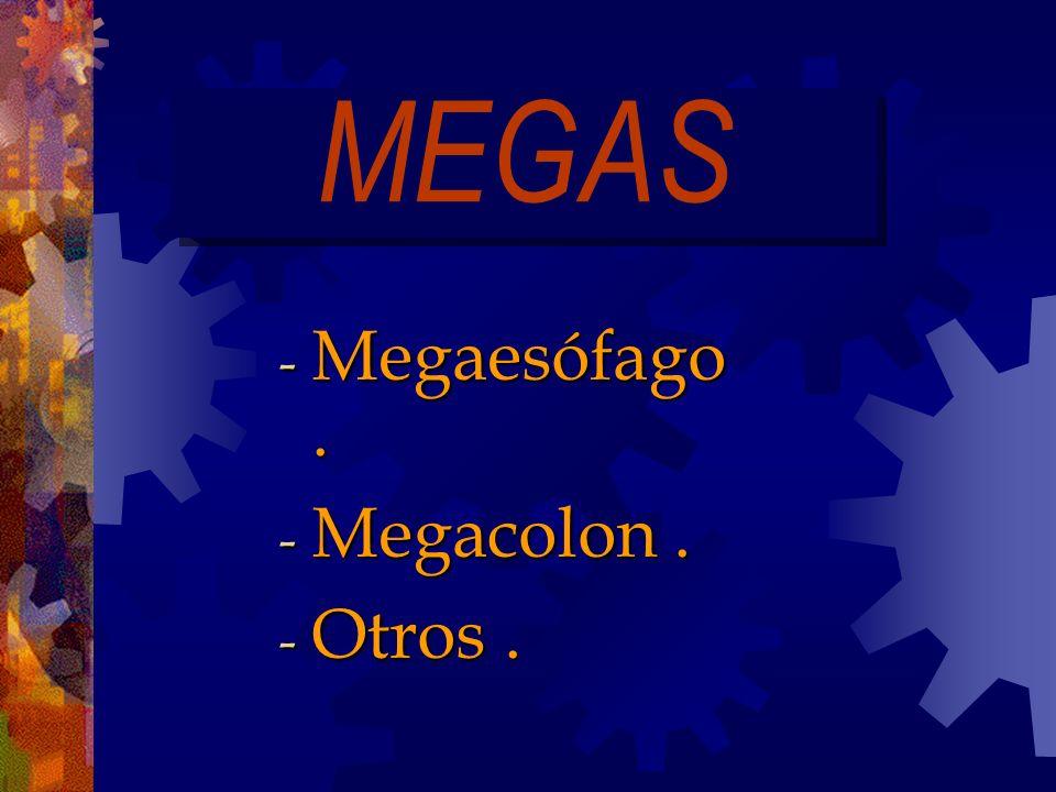 MEGAS Megaesófago . Megacolon . Otros .
