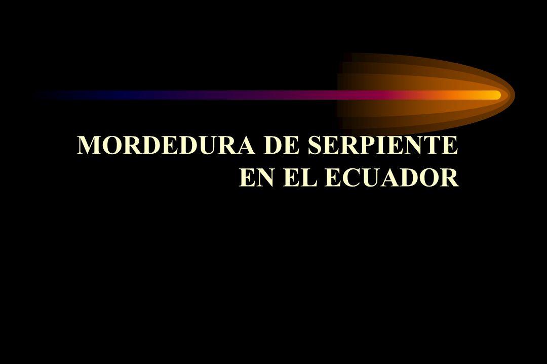 MORDEDURA DE SERPIENTE EN EL ECUADOR