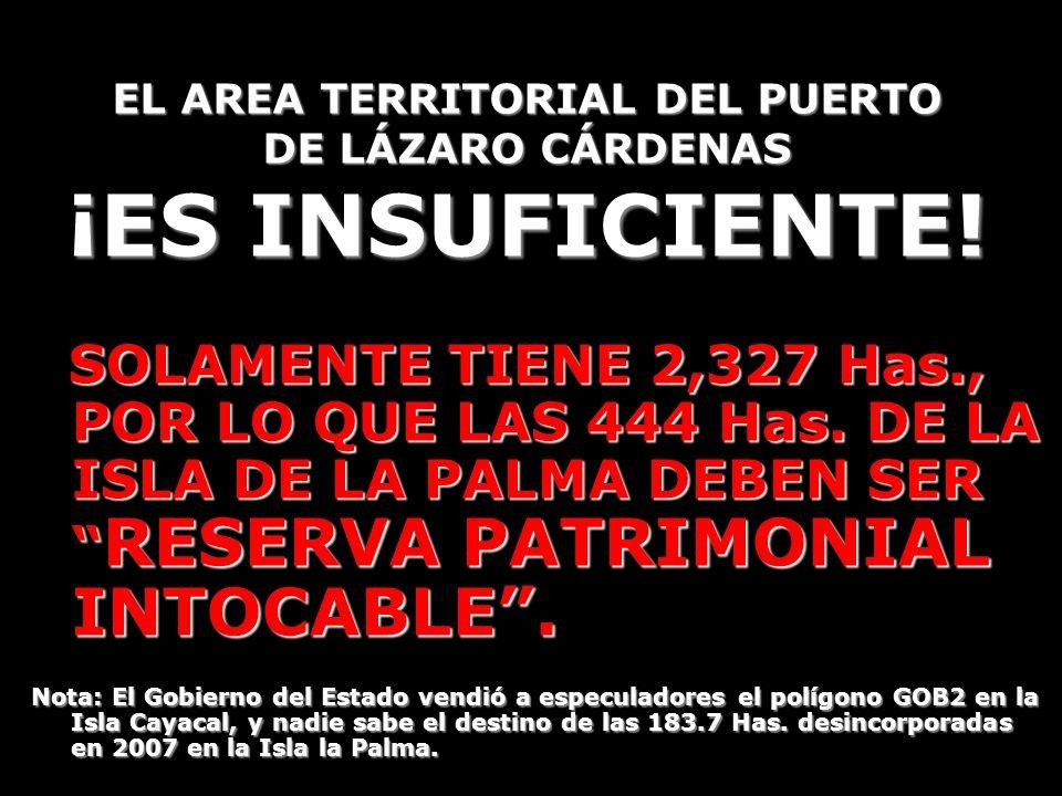 EL AREA TERRITORIAL DEL PUERTO DE LÁZARO CÁRDENAS ¡ES INSUFICIENTE!