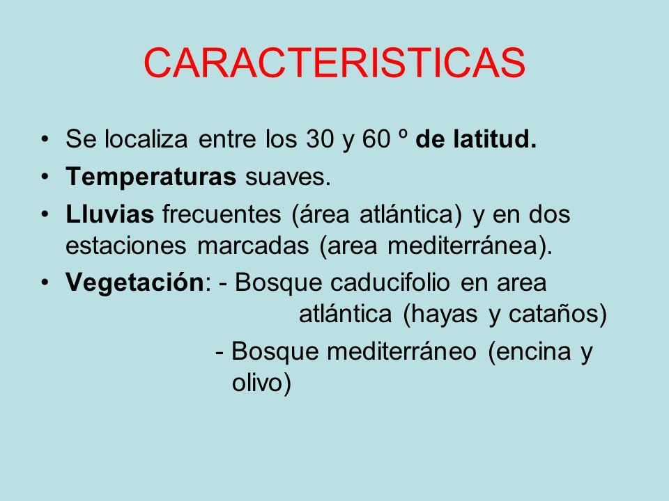 CARACTERISTICAS Se localiza entre los 30 y 60 º de latitud.