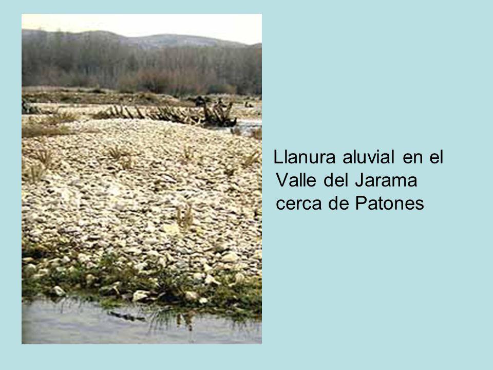 Llanura aluvial en el Valle del Jarama cerca de Patones