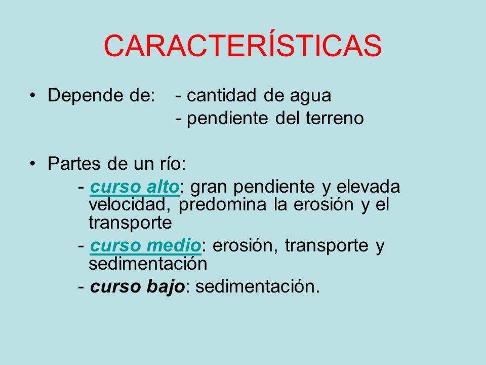 CARACTERÍSTICAS Depende de: - cantidad de agua - pendiente del terreno