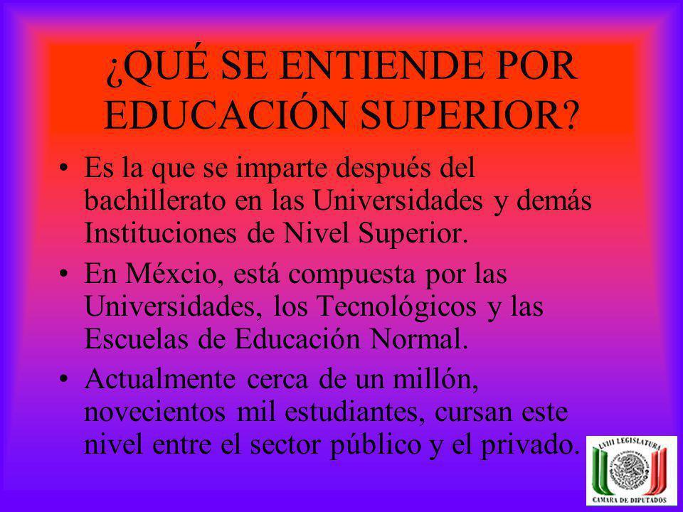 ¿QUÉ SE ENTIENDE POR EDUCACIÓN SUPERIOR