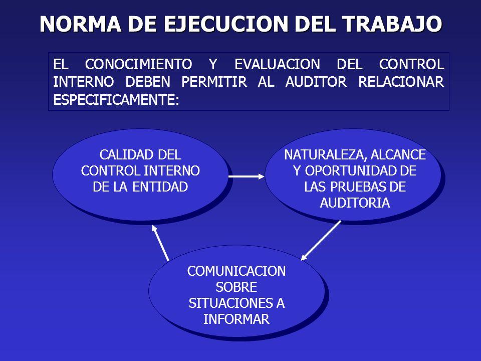 NORMA DE EJECUCION DEL TRABAJO