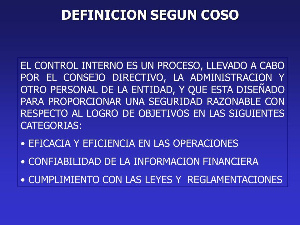 DEFINICION SEGUN COSO