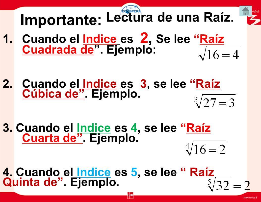 Importante: Lectura de una Raíz.