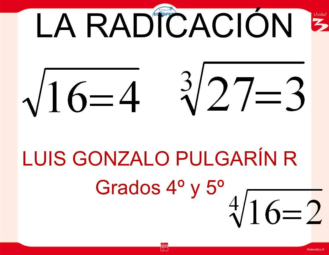 LUIS GONZALO PULGARÍN R Grados 4º y 5º