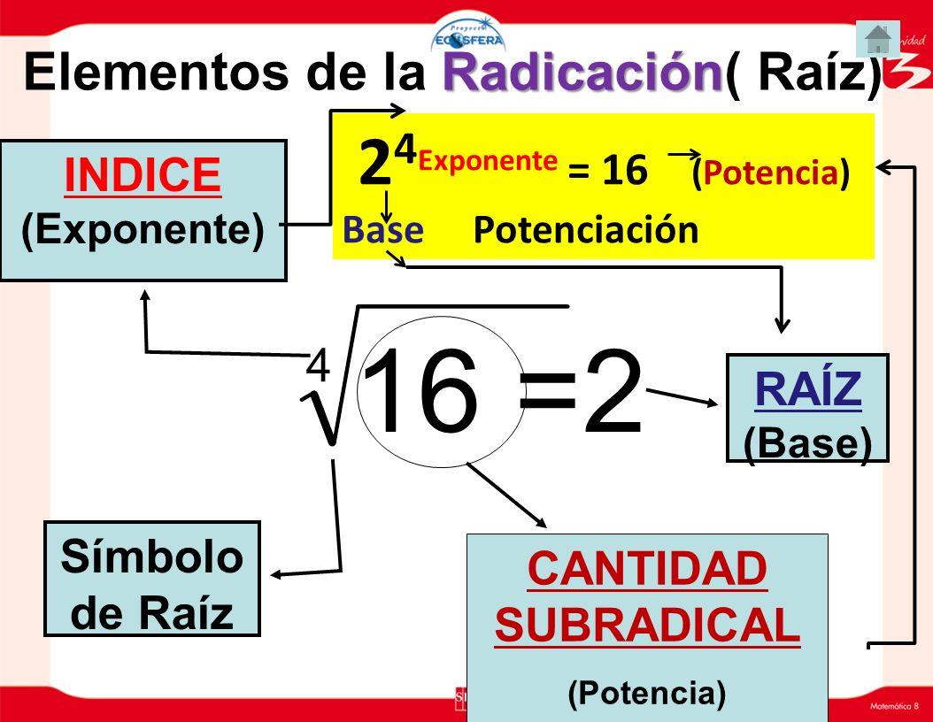 Elementos de la Radicación( Raíz) 24Exponente = 16 (Potencia)