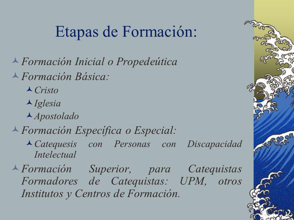 Etapas de Formación: Formación Inicial o Propedeútica