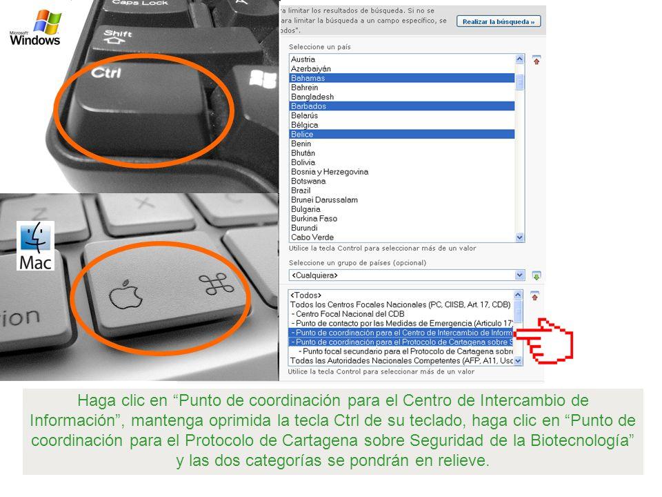 Haga clic en Punto de coordinación para el Centro de Intercambio de Información , mantenga oprimida la tecla Ctrl de su teclado, haga clic en Punto de coordinación para el Protocolo de Cartagena sobre Seguridad de la Biotecnología y las dos categorías se pondrán en relieve.
