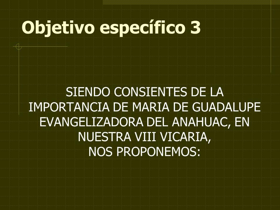 Objetivo específico 3 SIENDO CONSIENTES DE LA IMPORTANCIA DE MARIA DE GUADALUPE EVANGELIZADORA DEL ANAHUAC, EN NUESTRA VIII VICARIA,