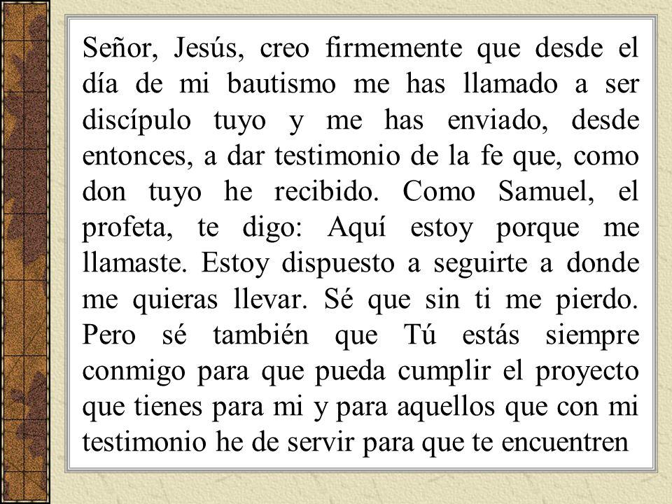 Señor, Jesús, creo firmemente que desde el día de mi bautismo me has llamado a ser discípulo tuyo y me has enviado, desde entonces, a dar testimonio de la fe que, como don tuyo he recibido.