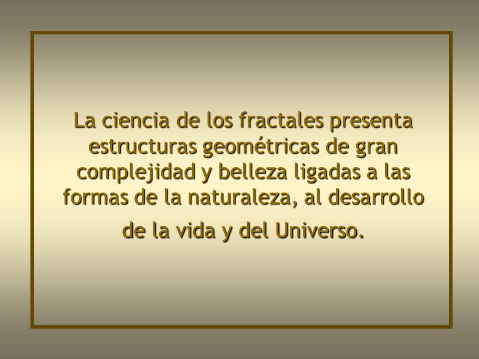 La ciencia de los fractales presenta estructuras geométricas de gran complejidad y belleza ligadas a las formas de la naturaleza, al desarrollo de la vida y del Universo.