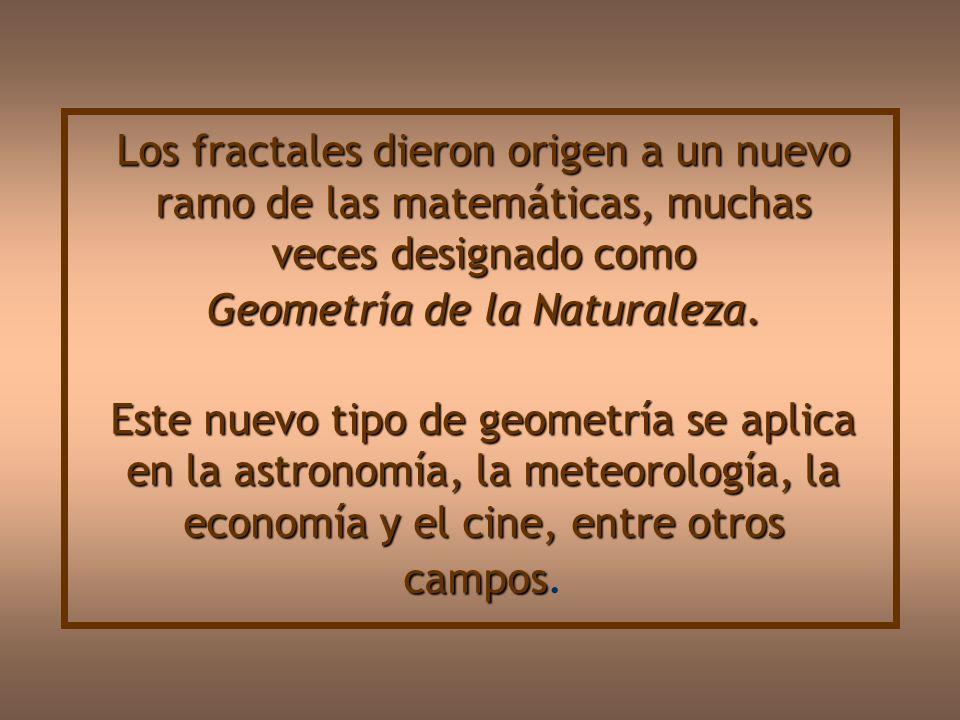 Los fractales dieron origen a un nuevo ramo de las matemáticas, muchas veces designado como Geometría de la Naturaleza.
