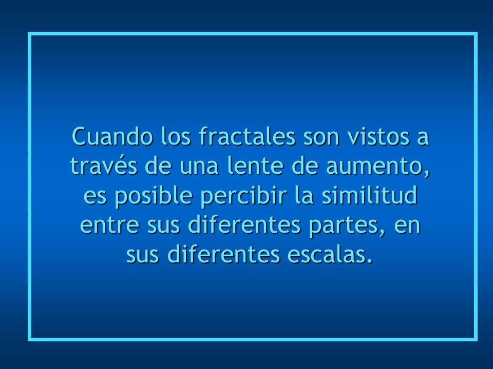 Cuando los fractales son vistos a través de una lente de aumento, es posible percibir la similitud entre sus diferentes partes, en sus diferentes escalas.