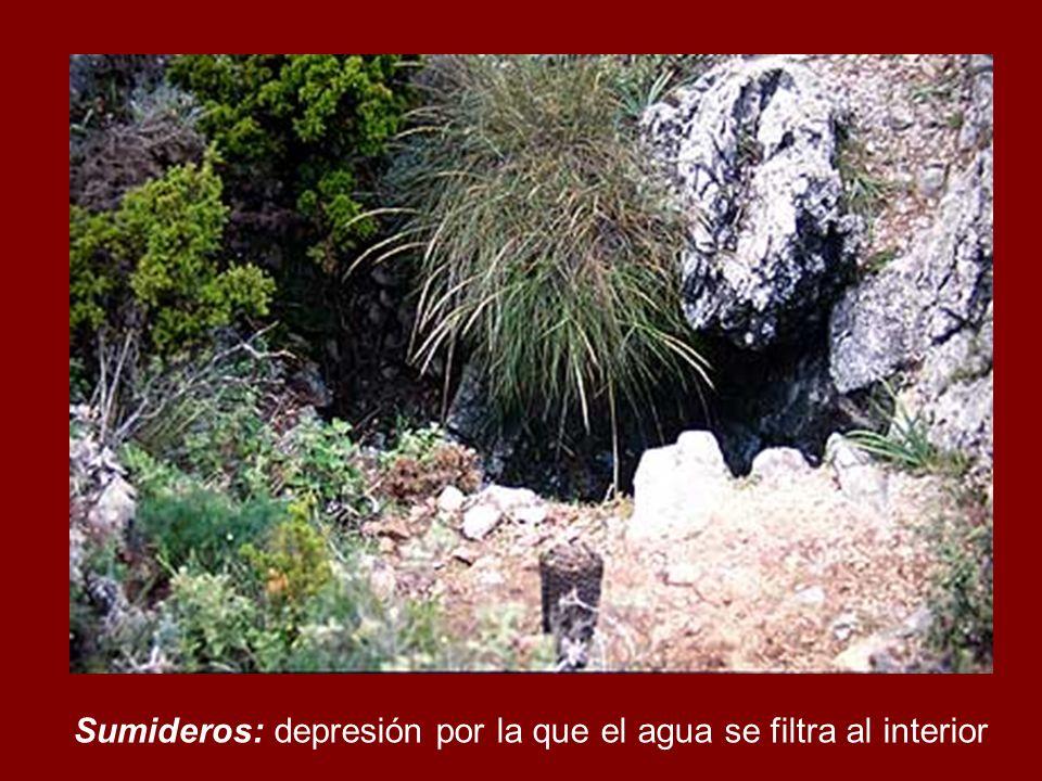 Sumideros: depresión por la que el agua se filtra al interior