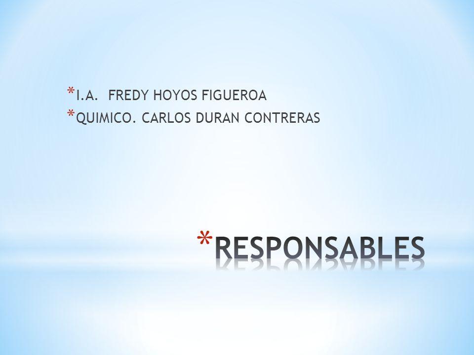 I.A. FREDY HOYOS FIGUEROA