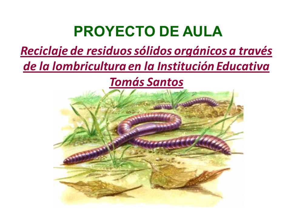 PROYECTO DE AULA Reciclaje de residuos sólidos orgánicos a través de la lombricultura en la Institución Educativa Tomás Santos.