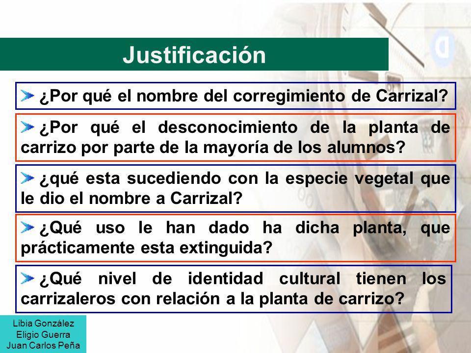 Justificación ¿Por qué el nombre del corregimiento de Carrizal