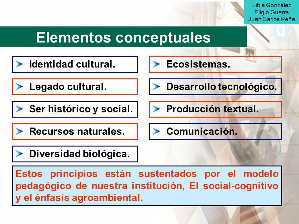 Elementos conceptuales