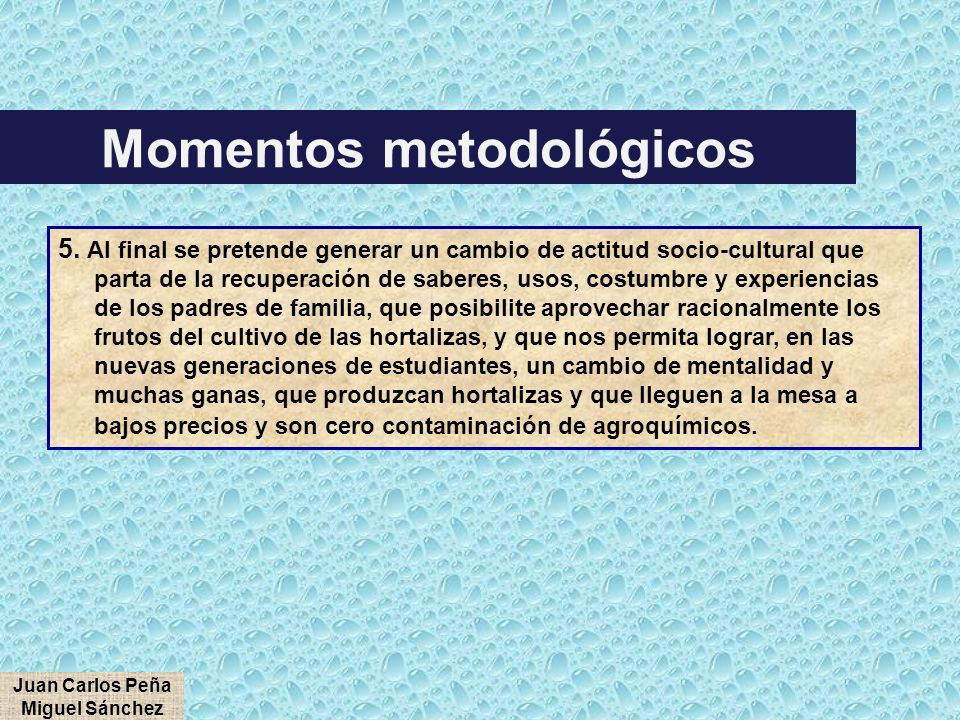 Momentos metodológicos Juan Carlos Peña Miguel Sánchez