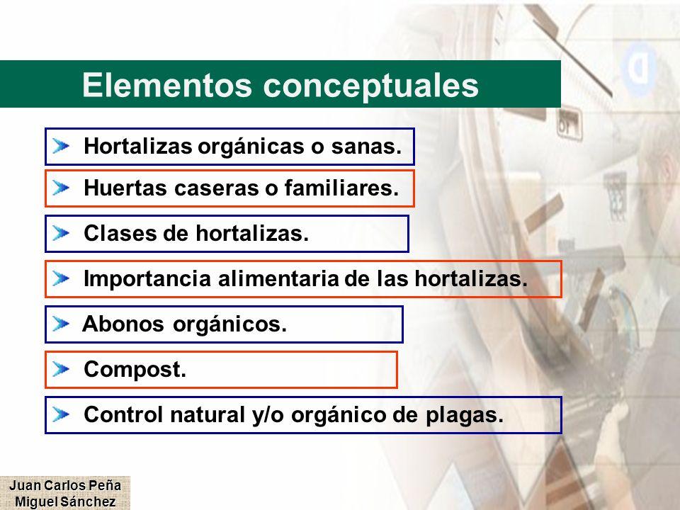 Elementos conceptuales Juan Carlos Peña Miguel Sánchez