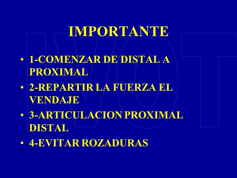 IMPORTANTE IVOT 1-COMENZAR DE DISTAL A PROXIMAL