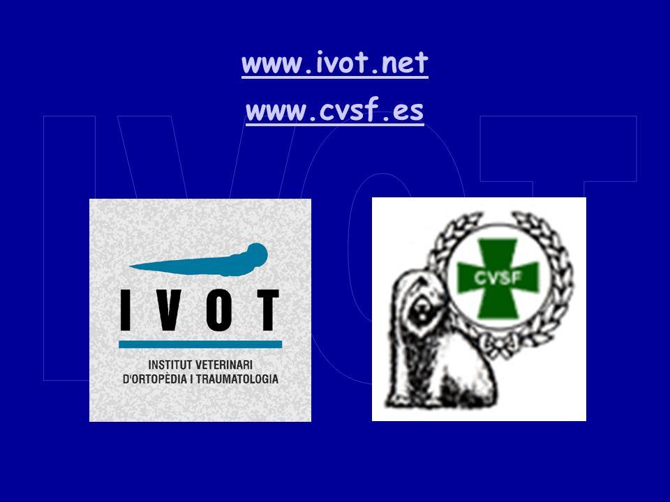 www.ivot.net www.cvsf.es IVOT