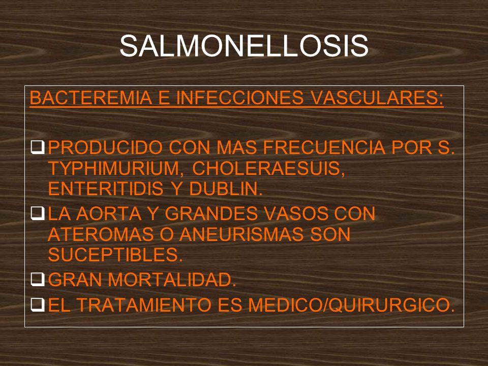 SALMONELLOSIS BACTEREMIA E INFECCIONES VASCULARES: