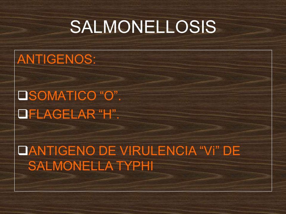 SALMONELLOSIS ANTIGENOS: SOMATICO O . FLAGELAR H .