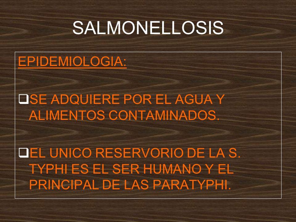 SALMONELLOSIS EPIDEMIOLOGIA: