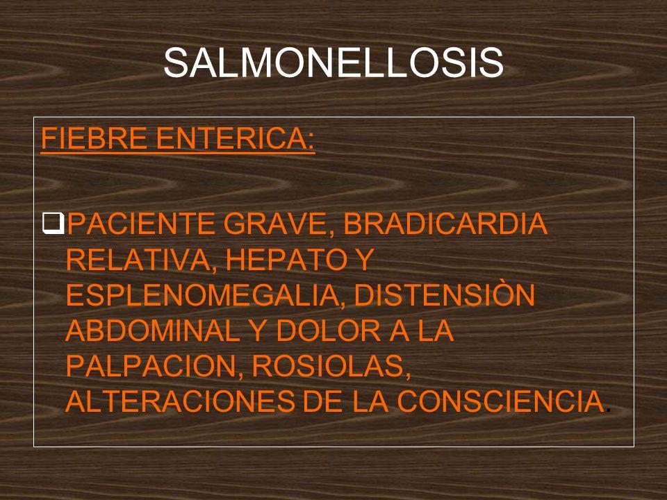 SALMONELLOSIS FIEBRE ENTERICA:
