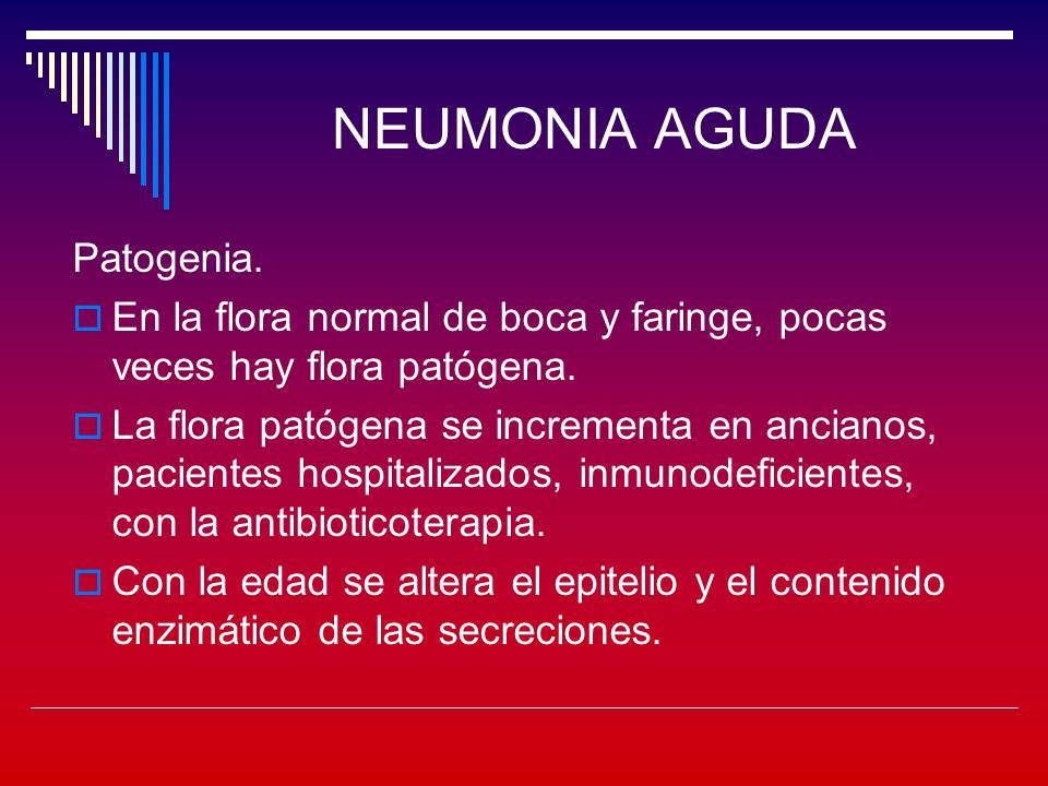 NEUMONIA AGUDA Patogenia.