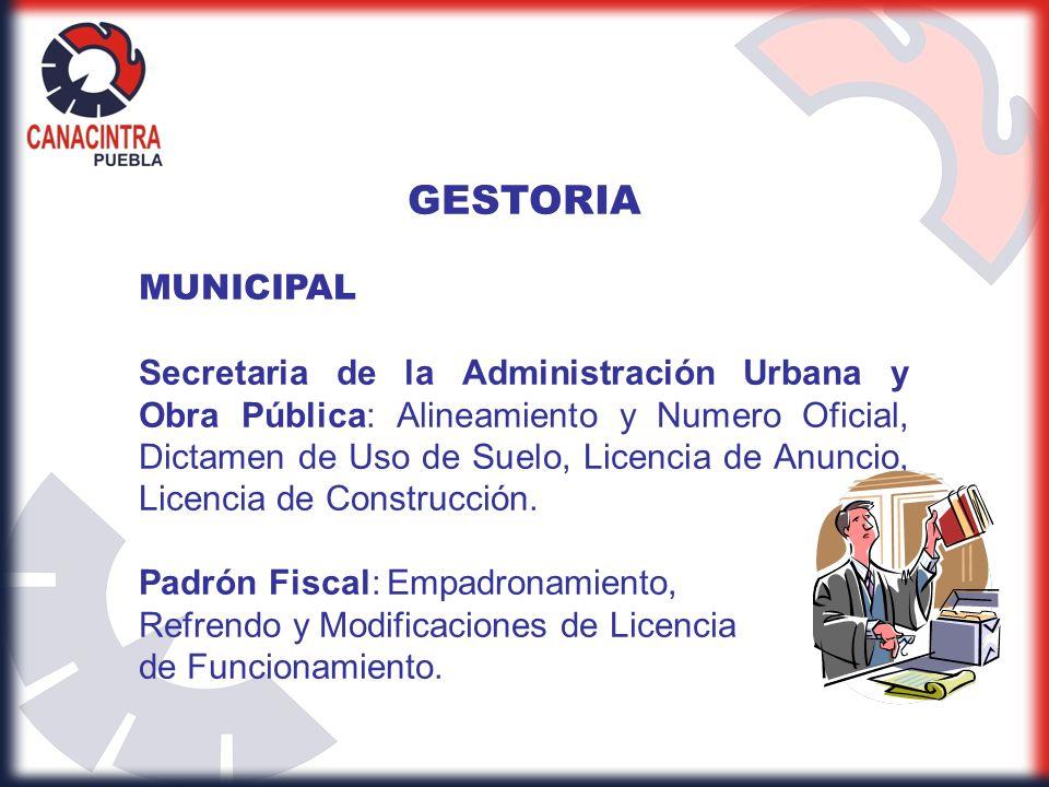 GESTORIA MUNICIPAL.
