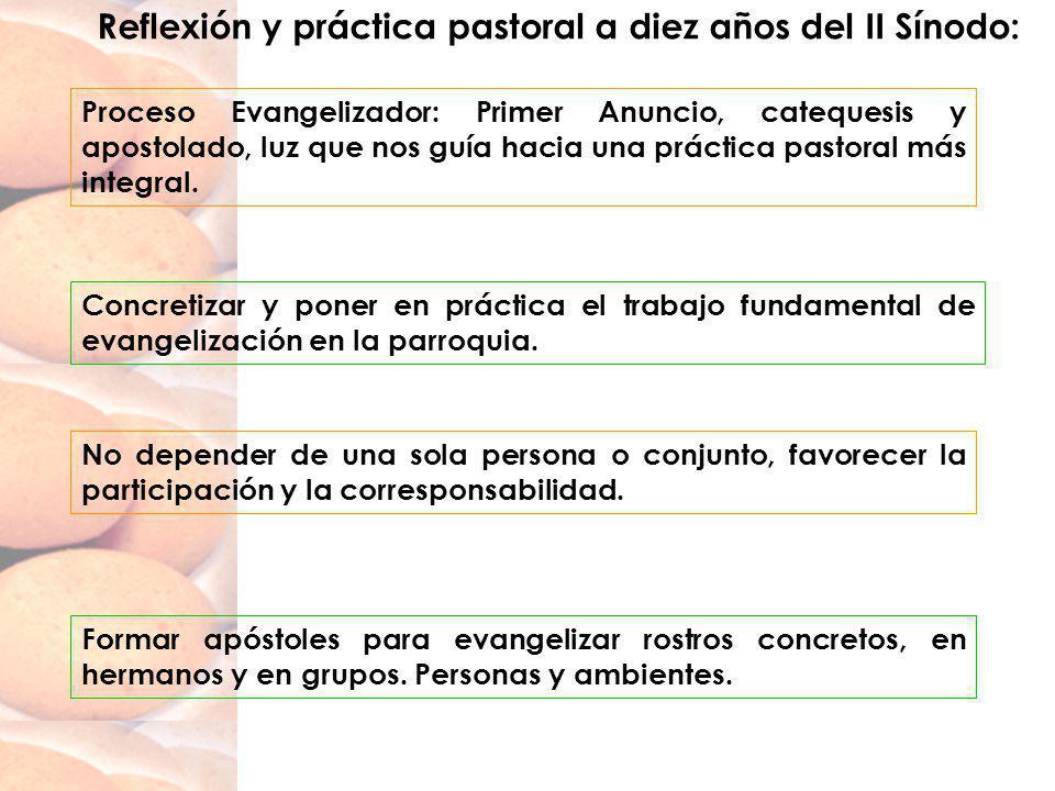 Reflexión y práctica pastoral a diez años del II Sínodo: