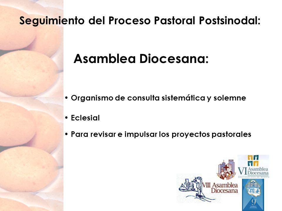 Seguimiento del Proceso Pastoral Postsinodal: