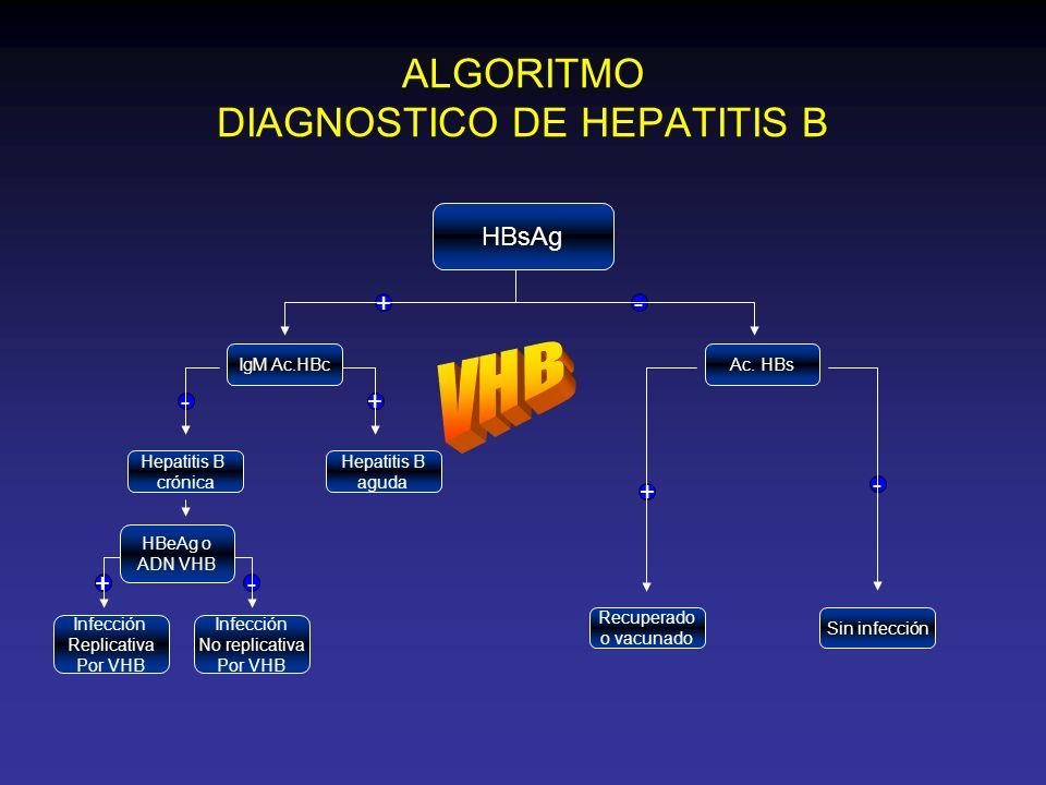 ALGORITMO DIAGNOSTICO DE HEPATITIS B