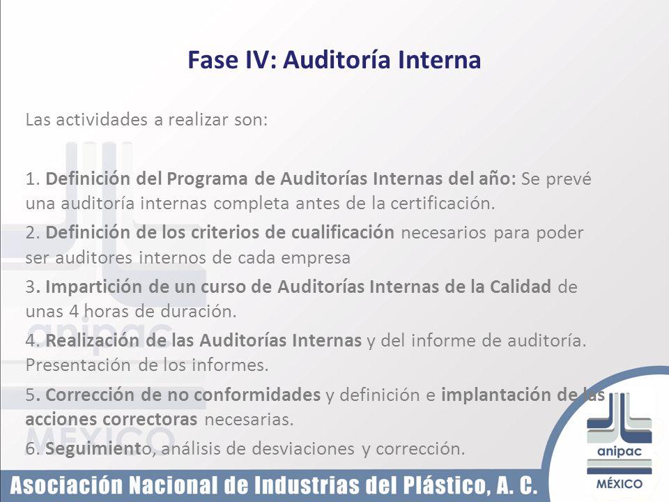 Fase IV: Auditoría Interna