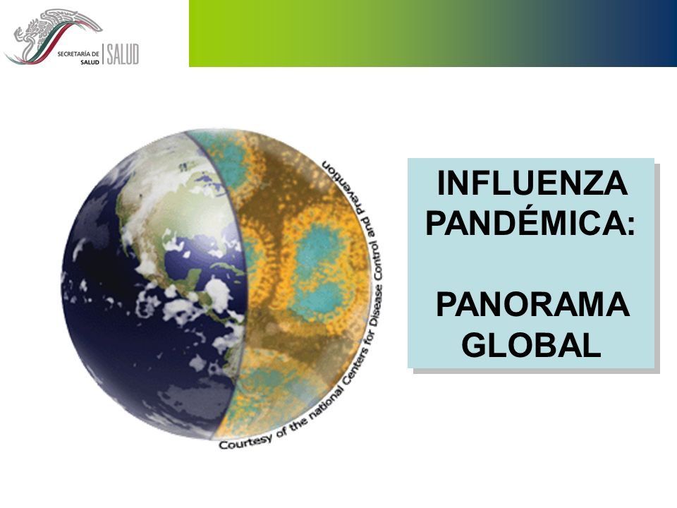 INFLUENZA PANDÉMICA: PANORAMA GLOBAL
