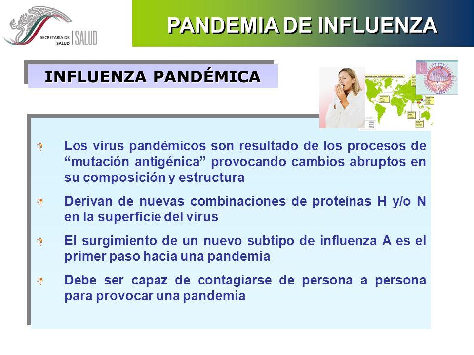 PANDEMIA DE INFLUENZA INFLUENZA PANDÉMICA