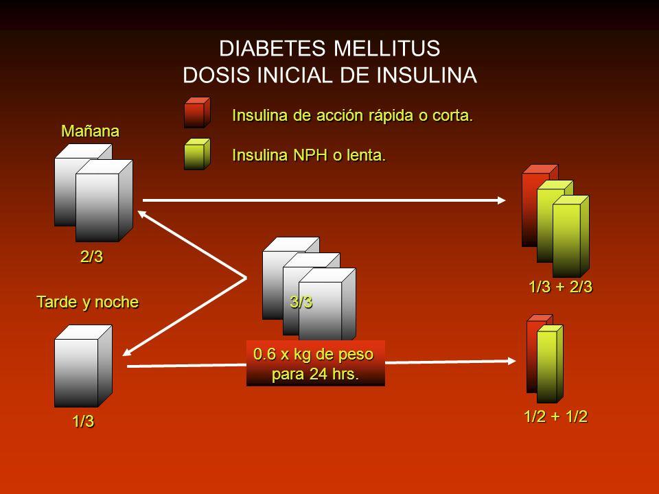 DIABETES MELLITUS DOSIS INICIAL DE INSULINA