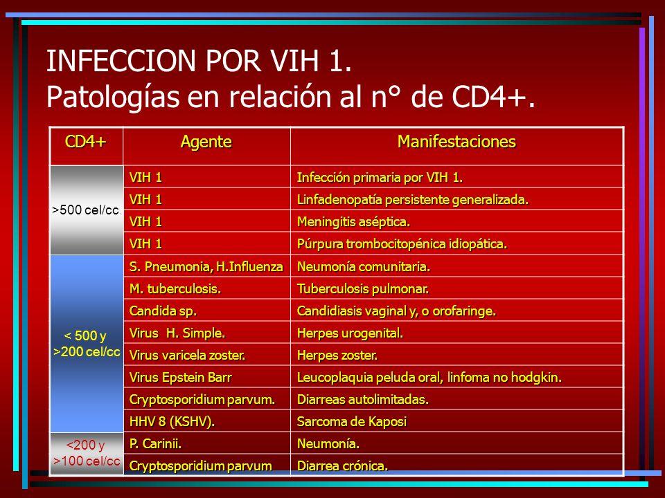 INFECCION POR VIH 1. Patologías en relación al n° de CD4+.