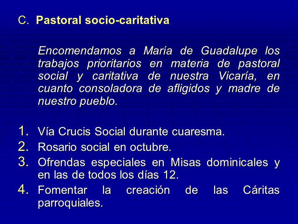 C. Pastoral socio-caritativa