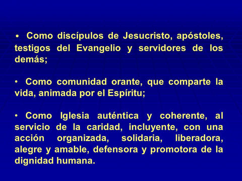 Como discípulos de Jesucristo, apóstoles, testigos del Evangelio y servidores de los demás;