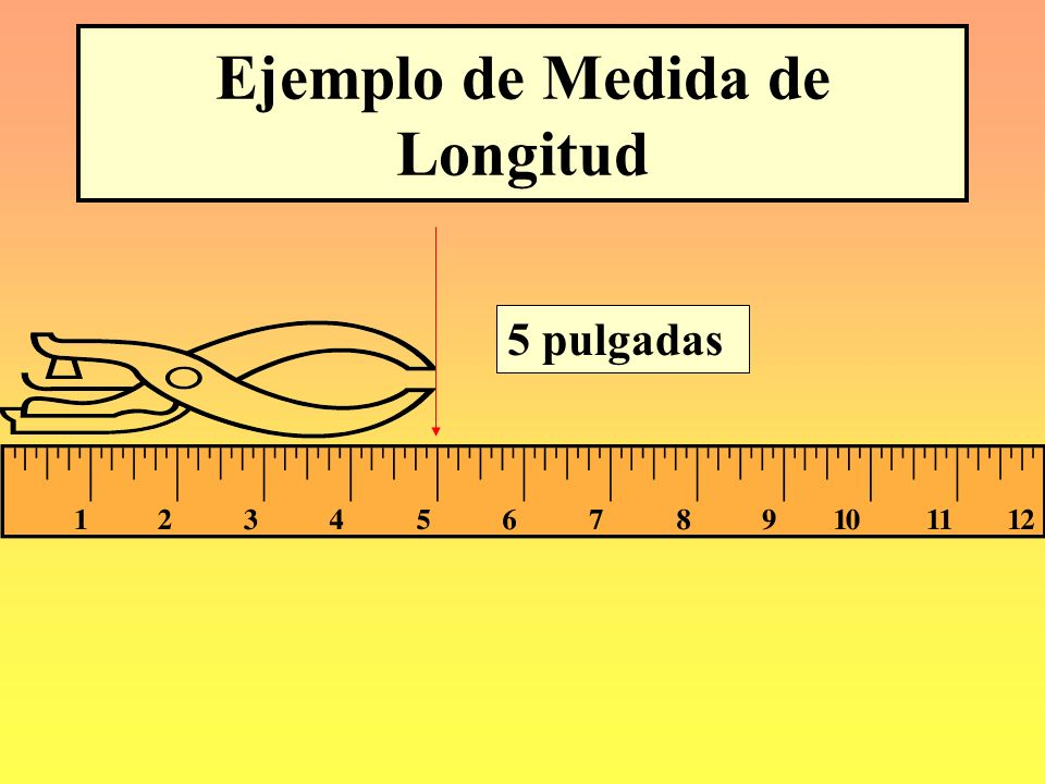 Ejemplo de Medida de Longitud