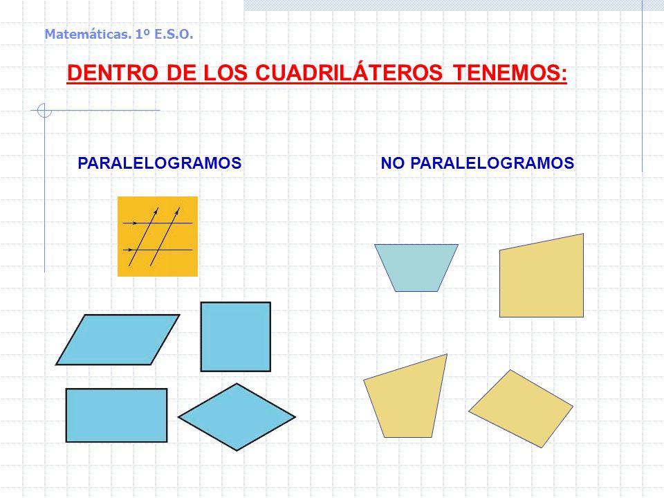 DENTRO DE LOS CUADRILÁTEROS TENEMOS: