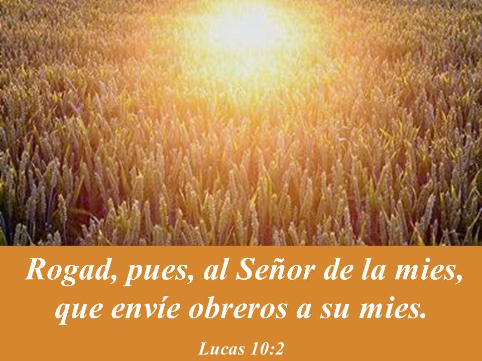 Rogad, pues, al Señor de la mies, que envíe obreros a su mies.